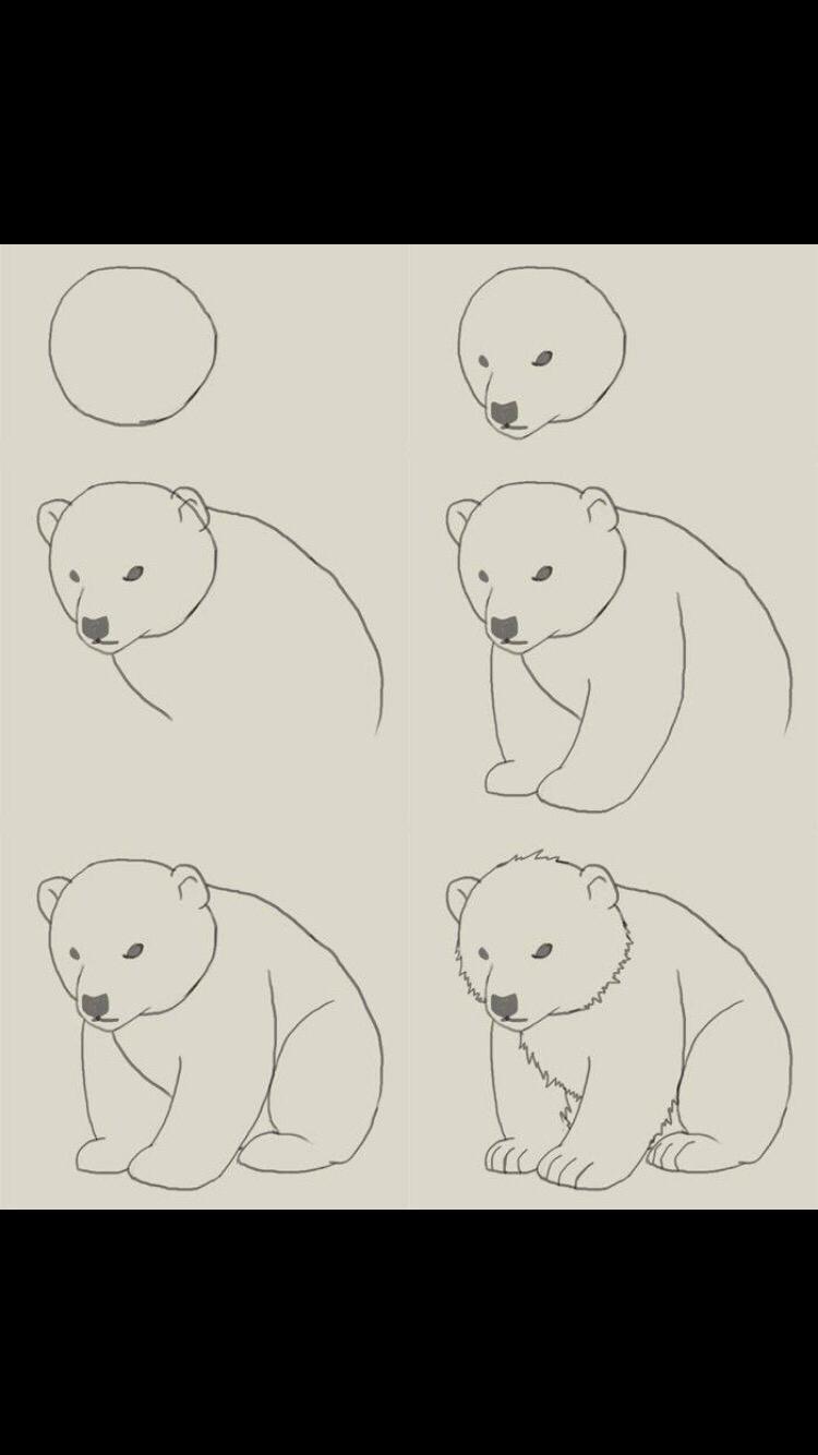 Drawn polar  bear disney How I've and so draw