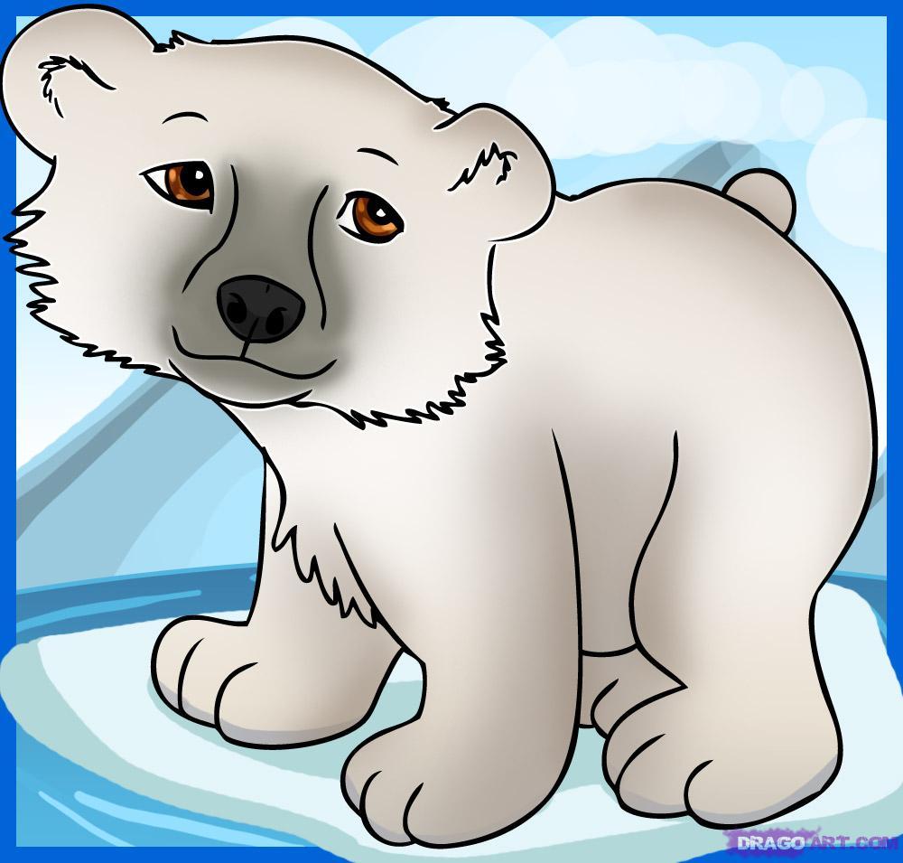 Drawn polar  bear dragoart A Cartoon Bear Step Animals