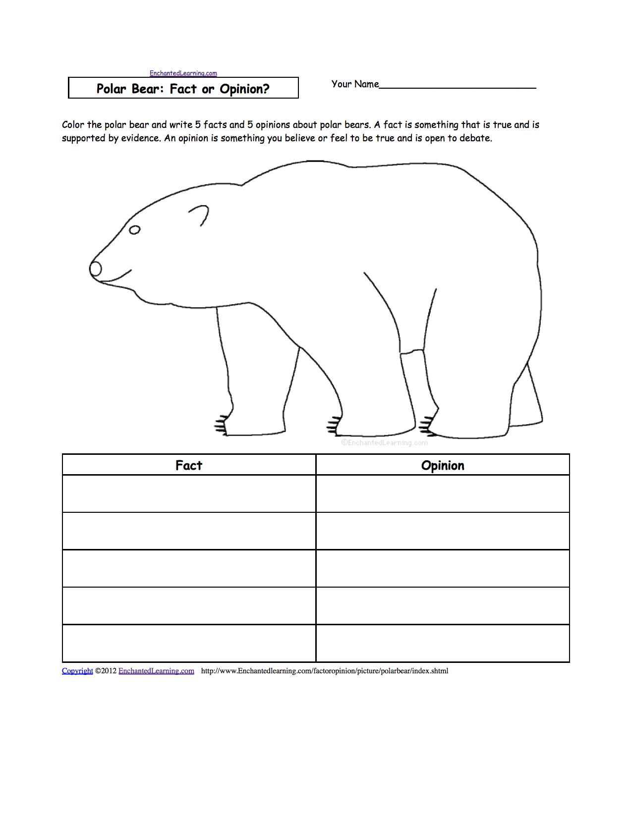 Drawn polar  bear educational Bear: at Bears com Fact