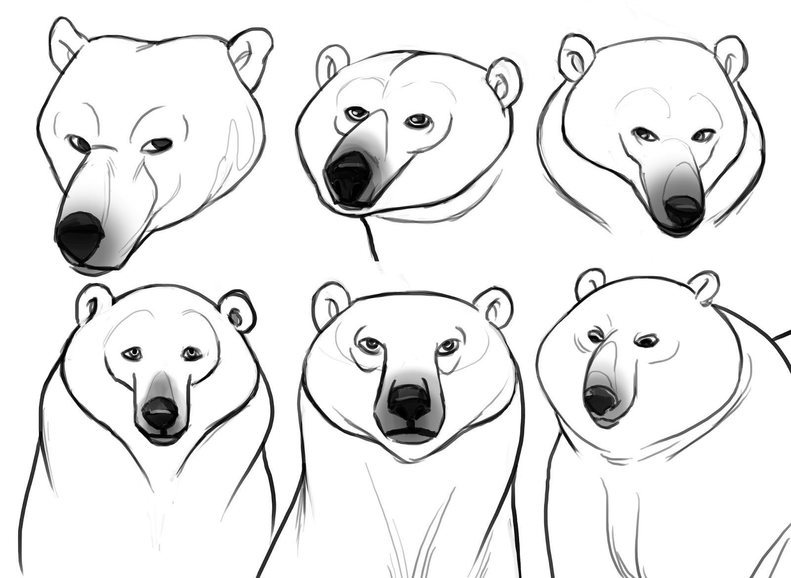 Drawn polar  bear face Bear's my a Exploring West