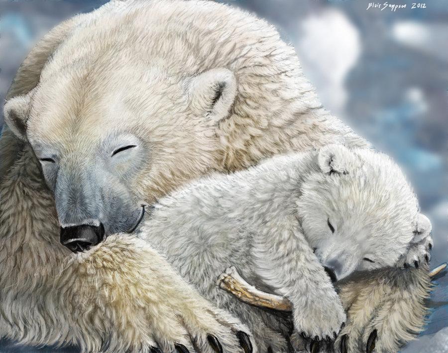 Drawn polar  bear family drawing Polar 2 Family Psithyrus DeviantArt