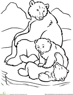 Drawn polar  bear family drawing Page Ideas Coloring templates Family