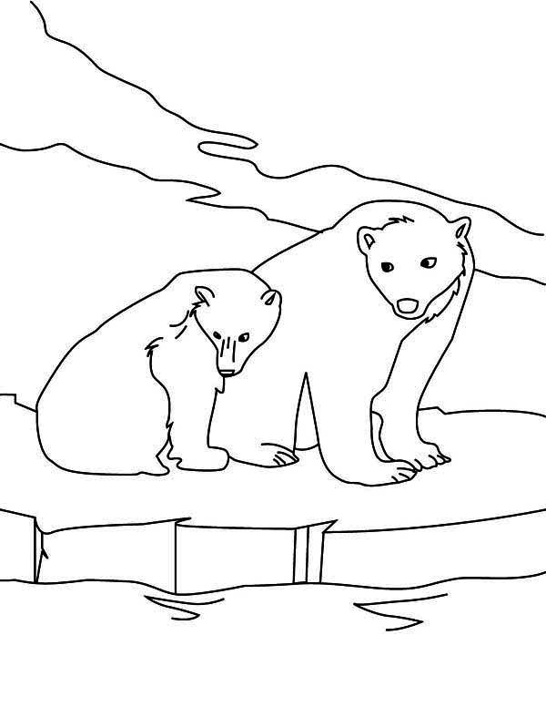 Drawn polar  bear family drawing Tattoos Polar Outline Bear 92+