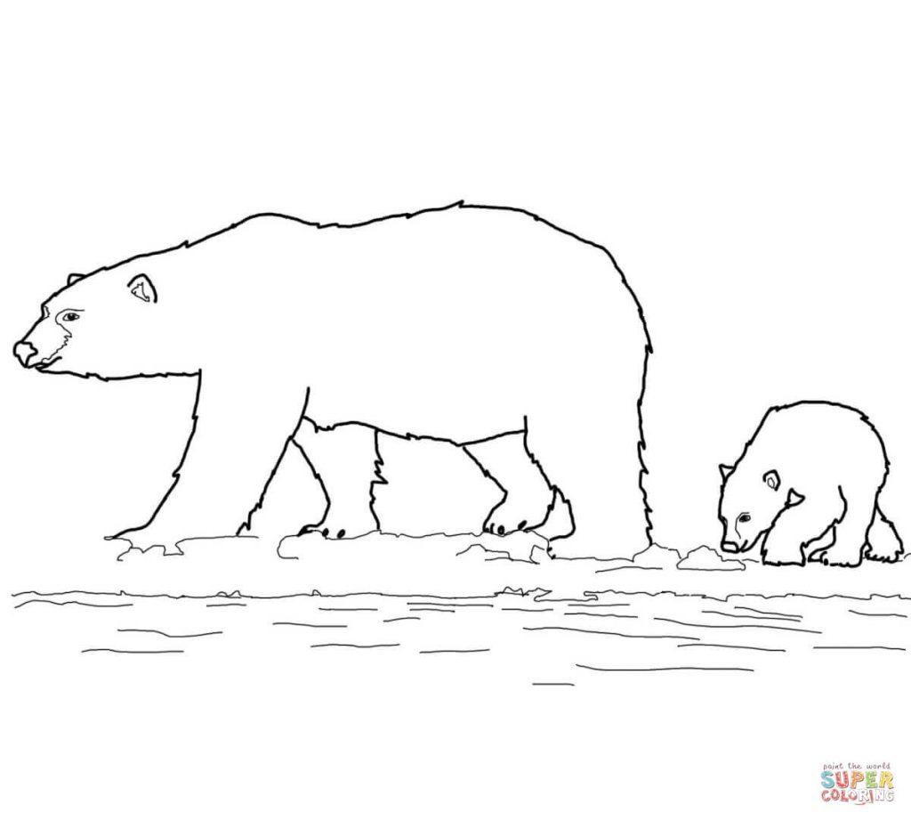 Drawn polar  bear family drawing Bears And Bears Draw Draw