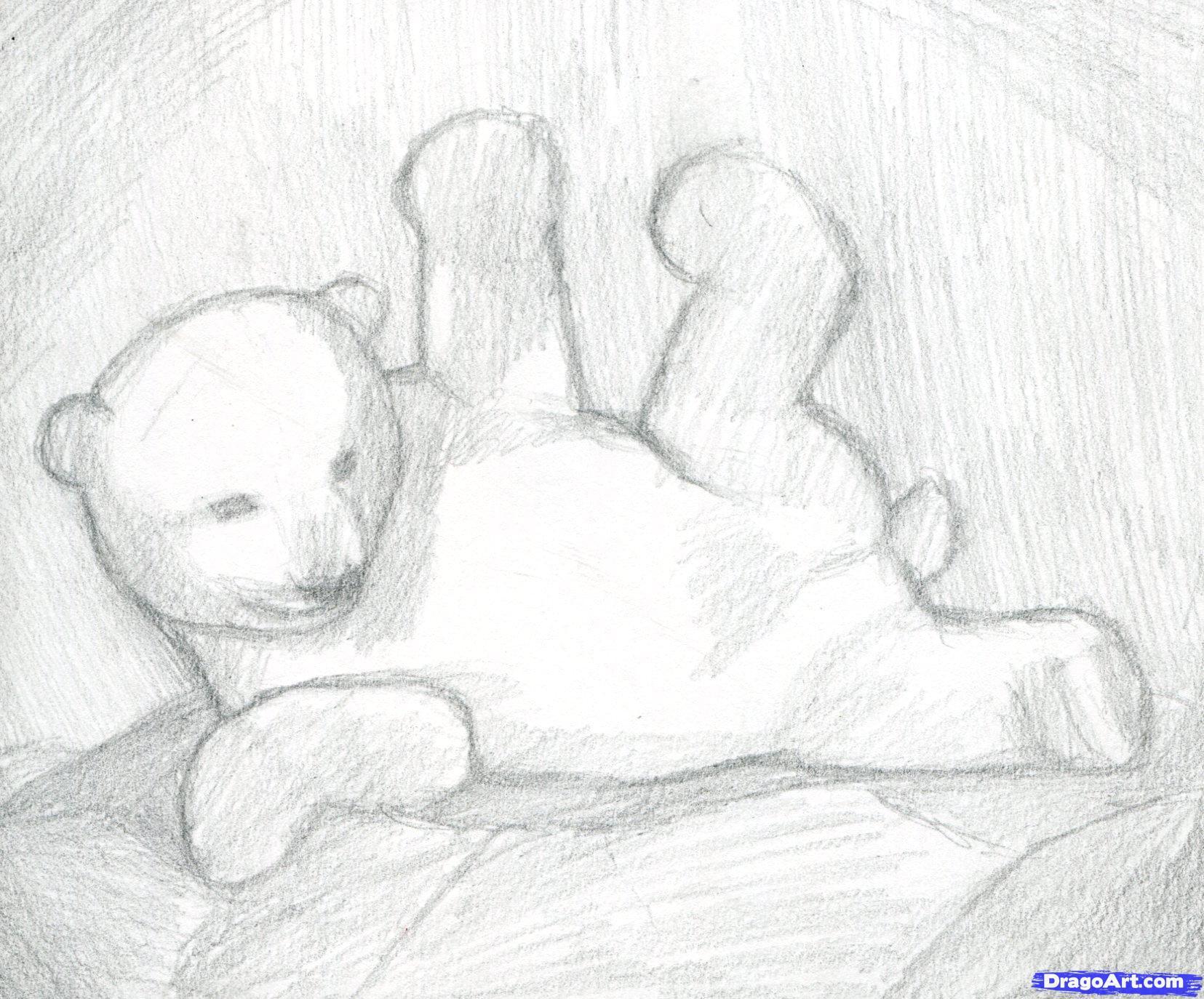 Drawn polar  bear hand drawn Step to by 5 polar