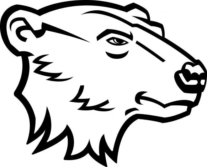Drawn polar  bear head Polar bear Bear Outline tattoo