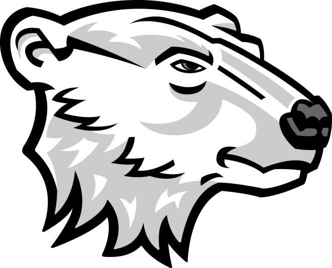 Drawn polar  bear head Bear Bear Head Clipart Clipart