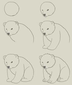 Drawn polar  bear ice drawing A polar How How draw