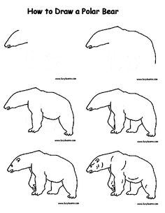Drawn polar  bear line drawing To Kids and for draw