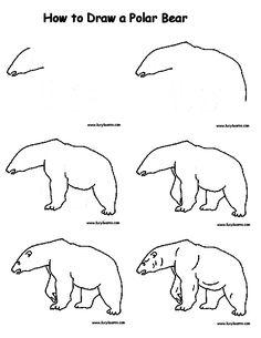 Drawn polar  bear line drawing Pin Kids draw  Wolf