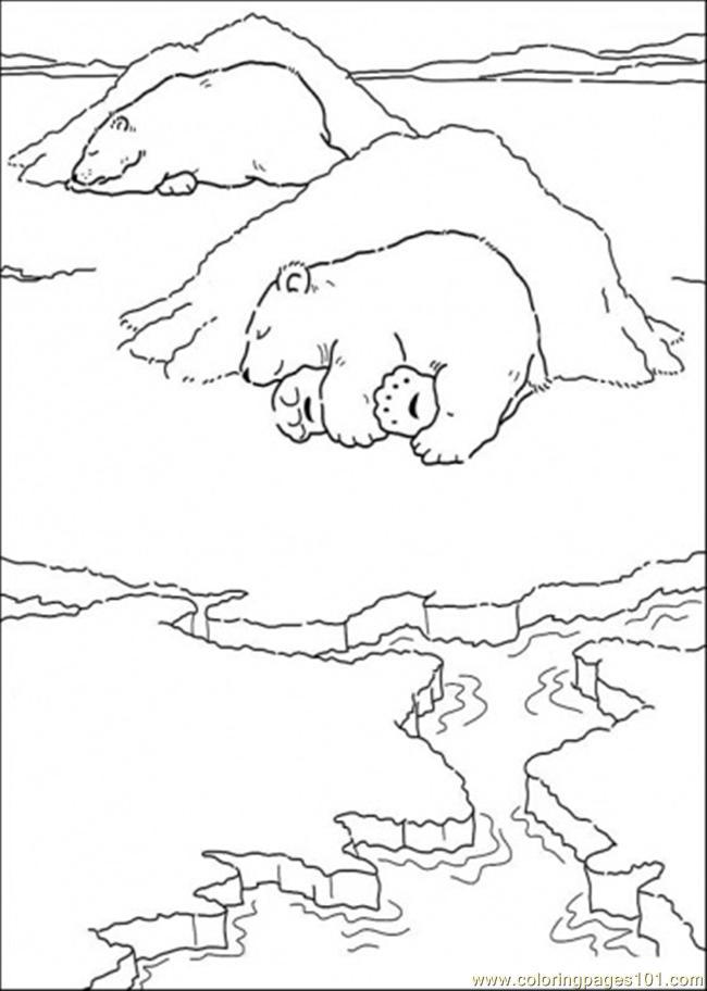 Drawn polar  bear little bear  Polar Page Polar Page