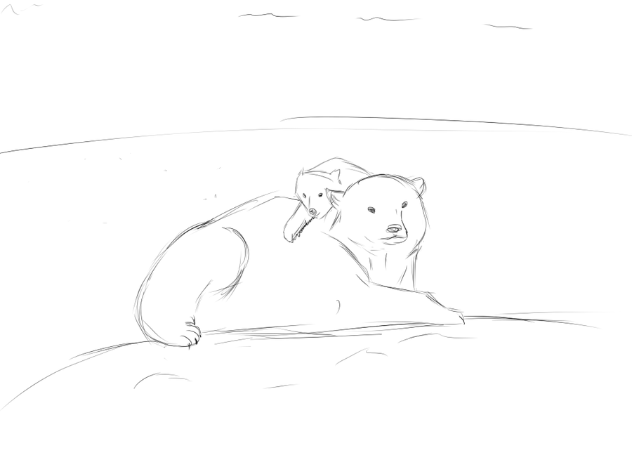 Drawn polar  bear mother bear And of Gallery Drawing Cubs