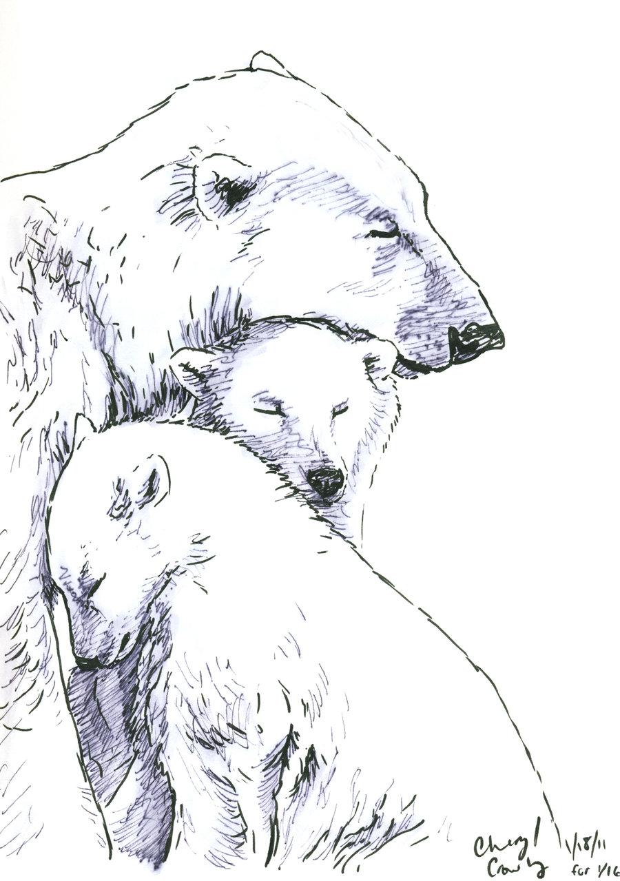 Drawn polar  bear native And Cubs Drawing drawing and