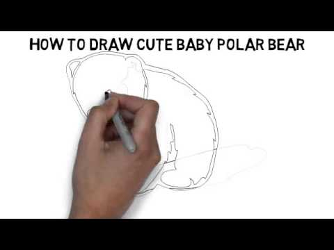 Drawn polar  bear real baby #4