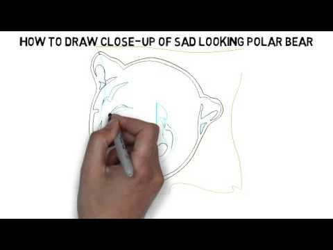 Drawn polar  bear sad #7