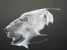 "Drawn polar  bear side view Of a #art ""Polar drawing"