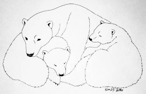 Drawn polar  bear sketch BEAR Polar cubs PAINTINGS