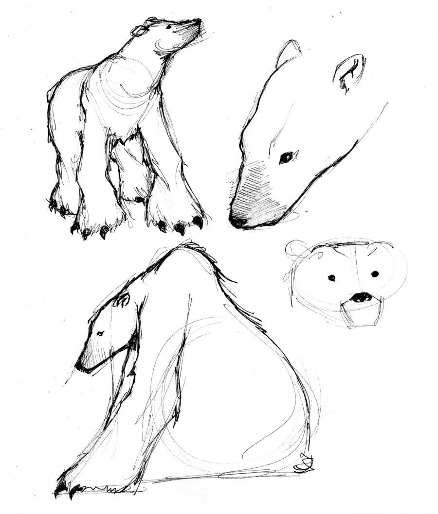 Drawn polar  bear small By JessicaDru by JessicaDru Polar
