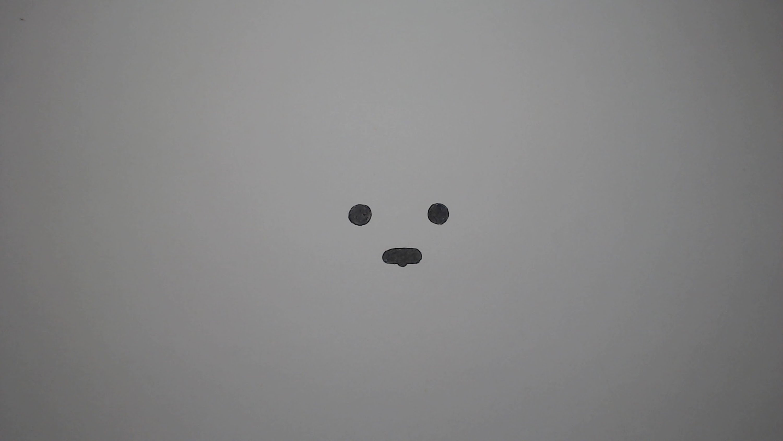 Drawn polar  bear snow bear Draw How In In YouTube