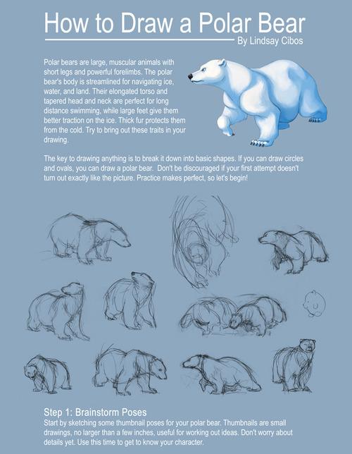 Drawn polar  bear thumbnail We a Help Polar to