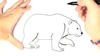 Drawn polar  bear thumbnail Kids draw a How (Realistic)
