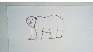 Drawn polar  bear thumbnail Drawing draw a How bear