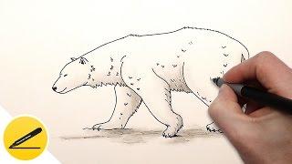 Drawn polar  bear thumbnail By Draw a How Draw