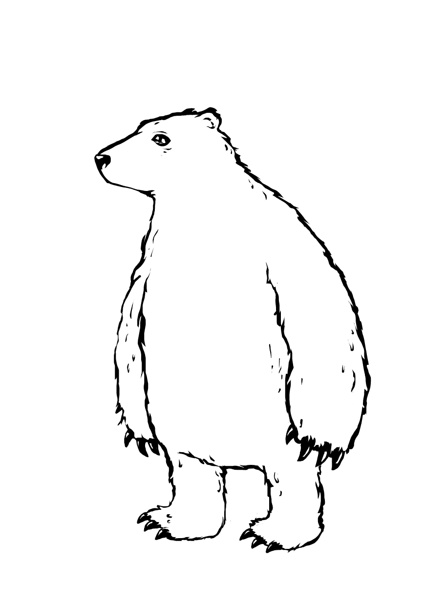 Drawn polar  bear tiny The the up SketchPort Polar
