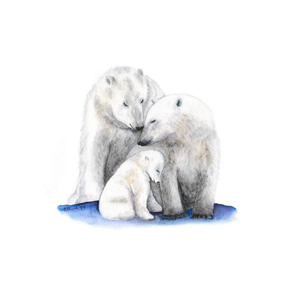 Drawn polar  bear tiny Bear Family Design Bear Toes