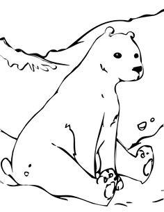 Drawn polar  bear tundra animal #6