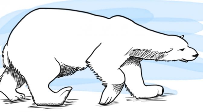 Drawn polar  bear tundra animal #3