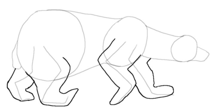 Drawn polar  bear tundra animal #8