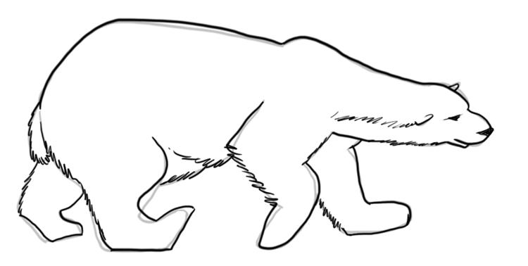 Drawn polar  bear tundra animal #1
