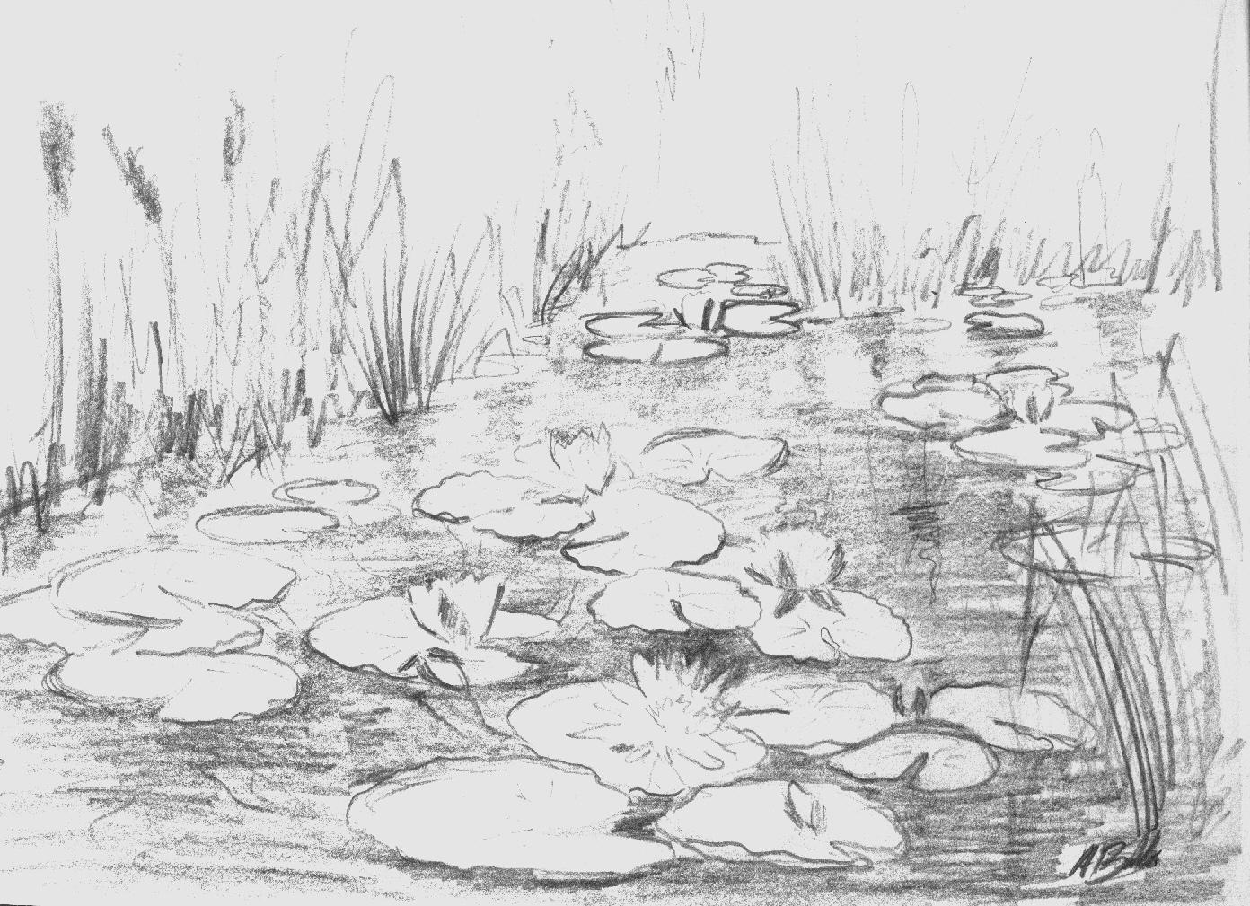 Drawn pond Pond Drawing Masteri To How