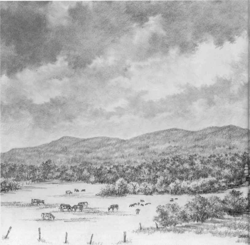 Drawn pond farm landscape Joshua Nava Drawing Farm Nature