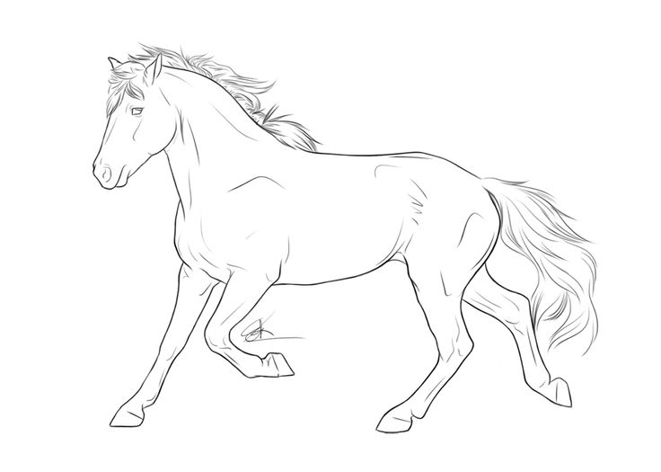 Drawn pony line art Line to / images 82