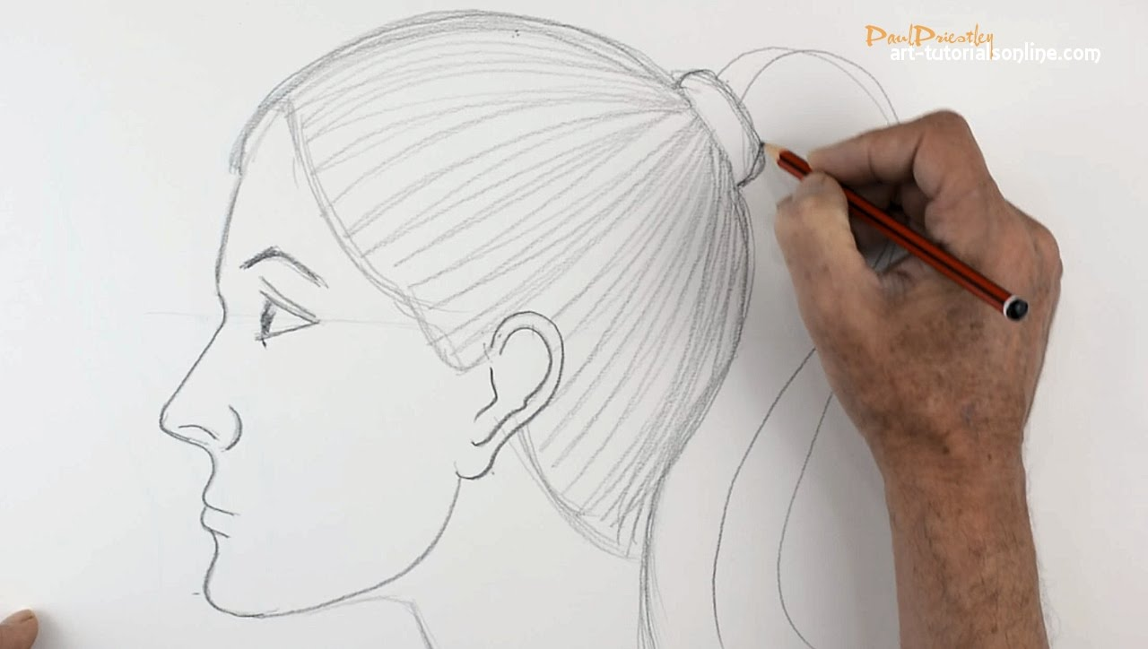 Drawn ponytail face YouTube draw View How Beginners