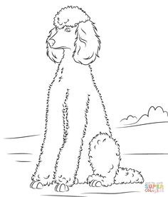 Drawn poodle abstract Poodle Coloring Pinterest  Super