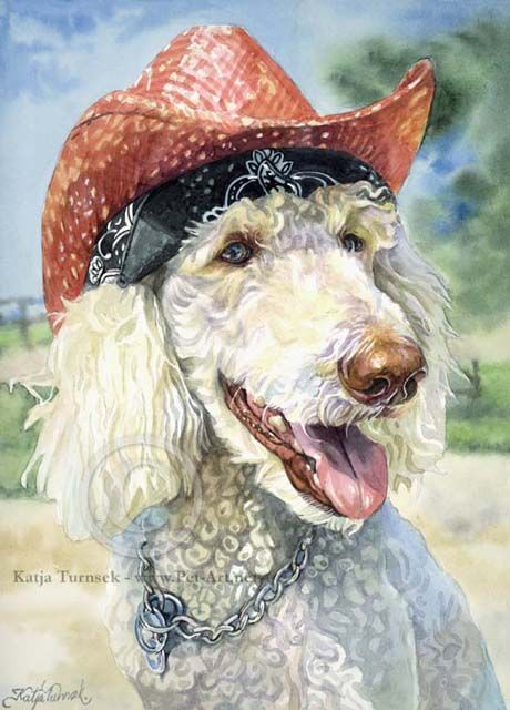Drawn poodle abstract Tricky Pinterest is Katja Chiens
