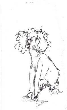Drawn poodle bad Framed Drawing Office in
