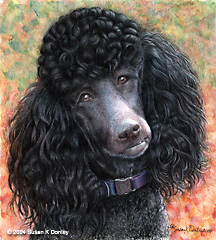 Drawn poodle black Painting a Dog a drawing
