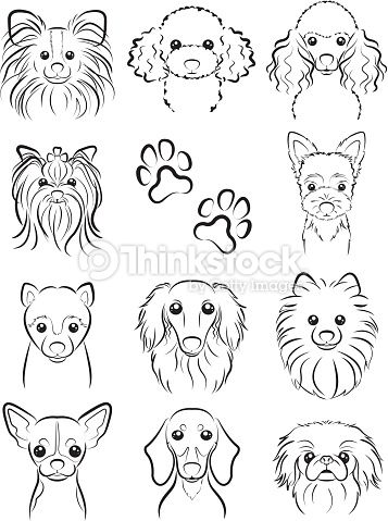 Drawn poodle face Dog Vector tattoos Art Poodle