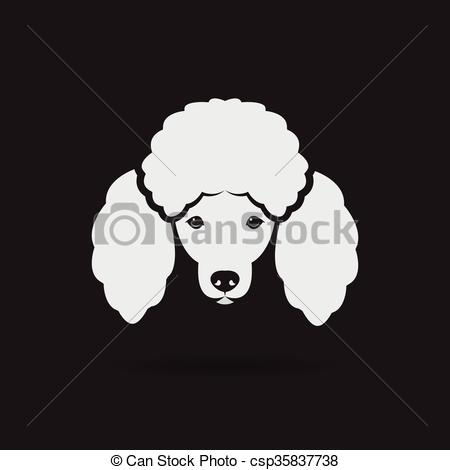 Drawn poodle face  Poodle Illustrations  1