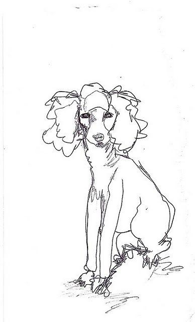 Drawn poodle natural Doodle in on best poodle