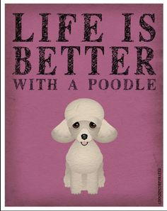 Drawn poodle pink Life Cartoon Active is