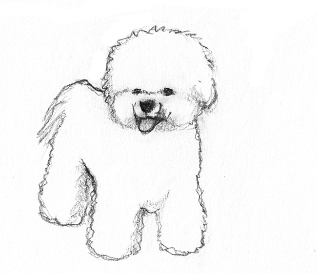 Drawn poodle simple Drawing poodle drawings of Pencil