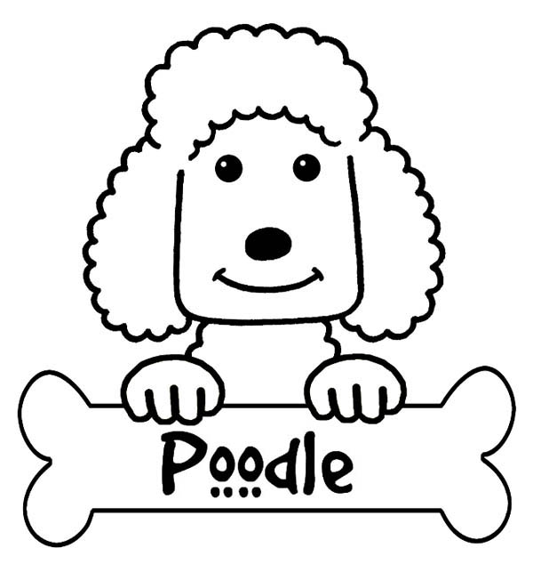 Drawn poodle simple Everyone Poodle Printable I Free