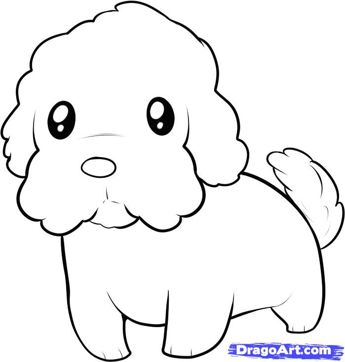 Drawn poodle simple Step maltese Draw to to