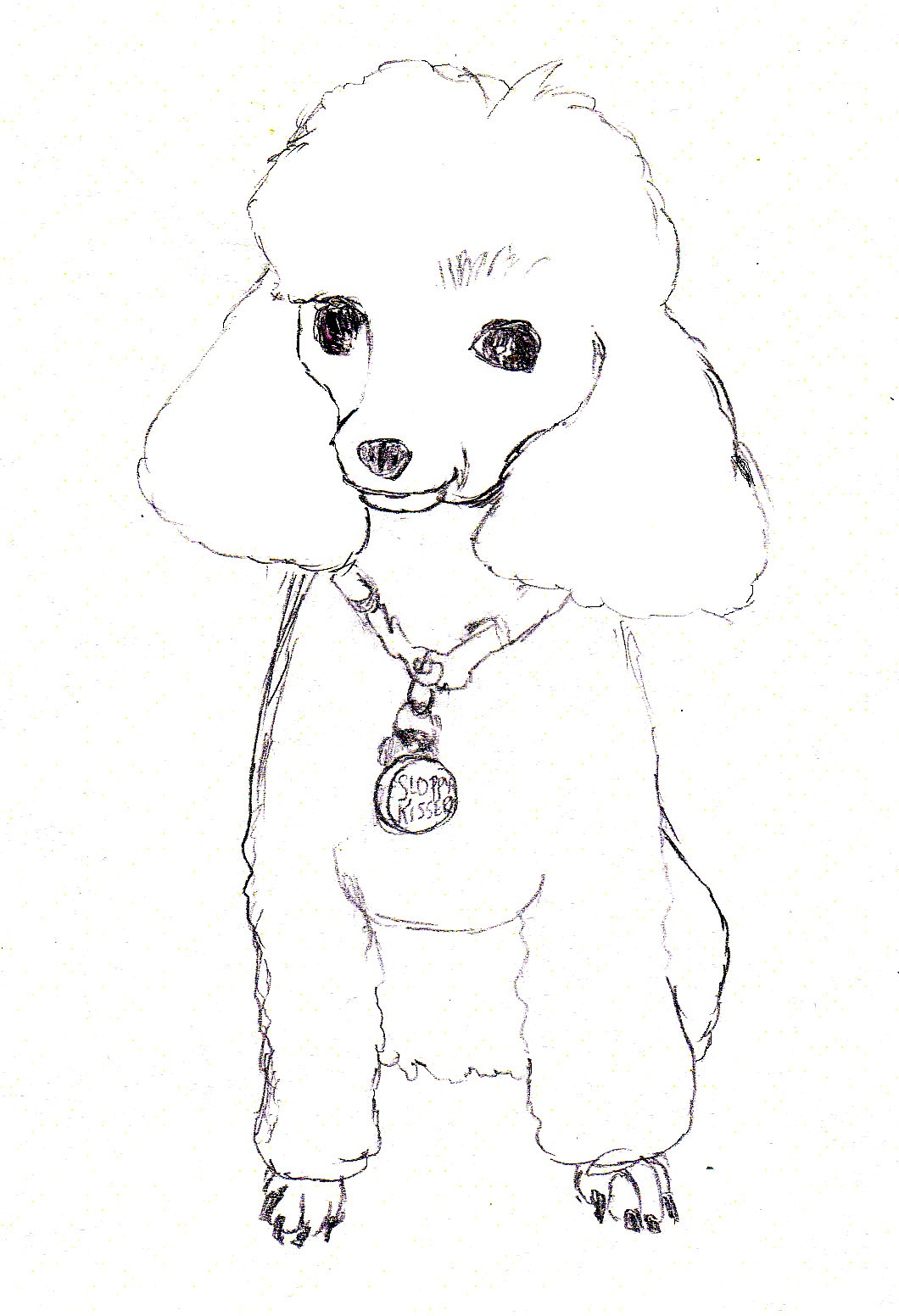 Drawn poodle themed Caricature sketching poodle Google Poodle