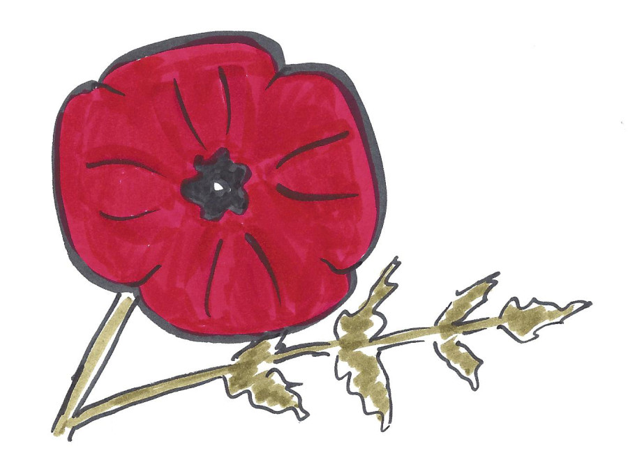 Drawn poppy How Enough jeannelking draw to